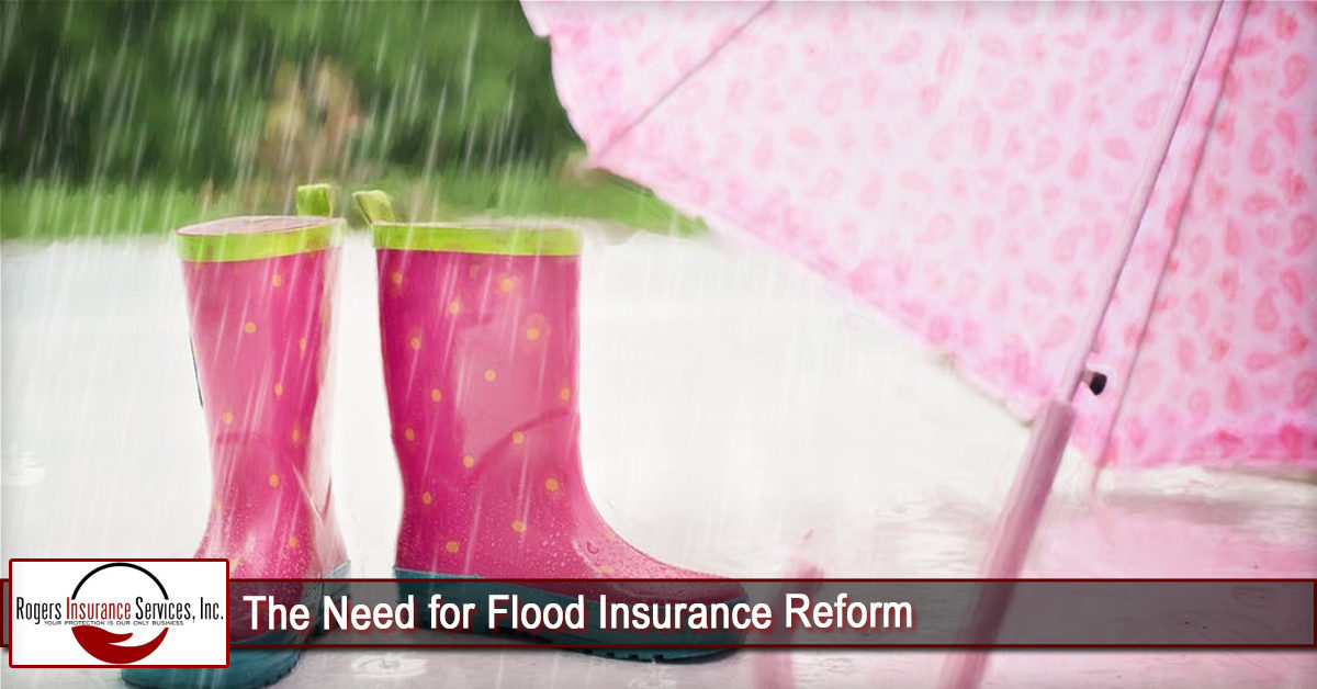 The Need for Flood Insurance Reform